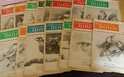 Cage & Aviary Birds Weekly - 15 Copies - 1963 - 1965