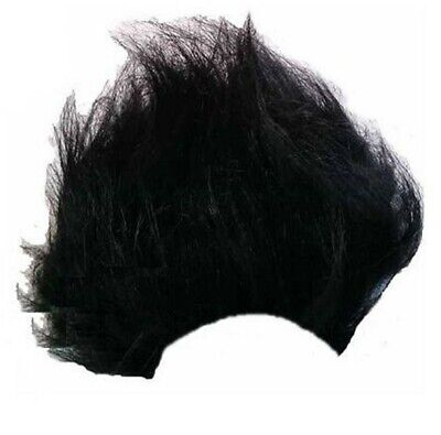 Black Dennis Wig Boys Adults Fancy Dress World Book Day Week