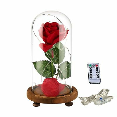 Beauty and the Beast Enchanted Rose Glass Dome Valentines Day Gift Birthday