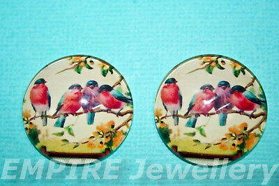 1 x Gorgeous Vintage Birds on Branch 25x25mm Glass Dome Cabochon Cameo Robin