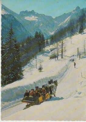 Germany (W) - Horse Drawn Sleigh & Trettachspitze Mountain (Post Card) 1960's