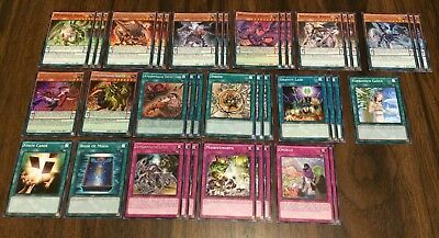 Yu-Gi-Oh Amorphage Deck Book Of Moon Forbidden Lance