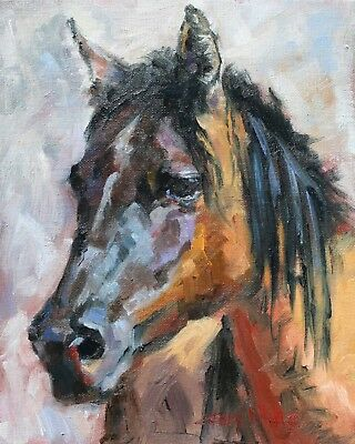 Horse, Grulla, southwest, mustang, new oil painting, 8x10 original by Gary White