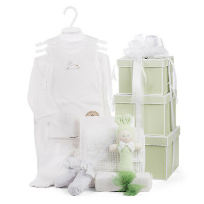 NEW Boz Luxe Boutique Baby Hamper Apple