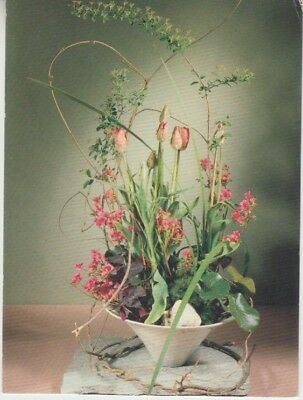 Germany (W) - Tulips, Spiraa & Azalea Branches (Post Card) 1960's