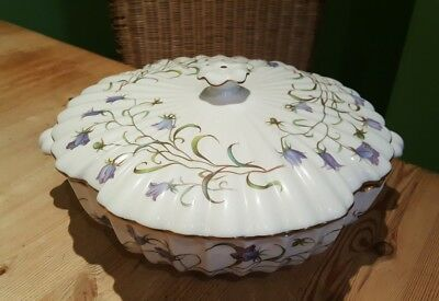 STUNNING SPODE CANTERBURY Y8497 LIDDED SERVING TUREEN campanula