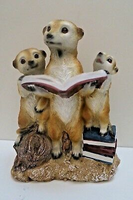 Meerkat Reading Books Animal Garden  Statue Ornament Figurine Sculpture