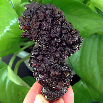 118g LARGE COPROLITE - DINOSAUR ERA DUNG POOP AUTHENTIC FOSSIL A11X08