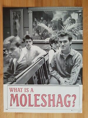 the smiths morrissey picture print poster App 22x30cm