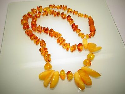 Baltic Natural Amber Necklace