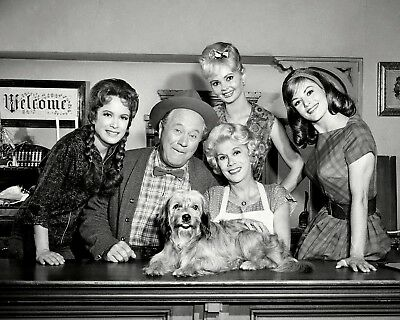 1964 cast publicity photo from the CBS Television program  Petticoat Junction