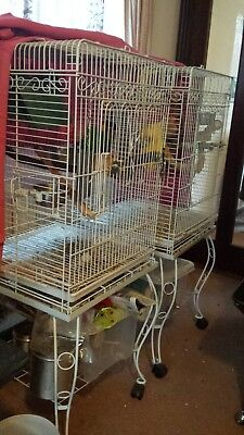 2 bird cages on wheeled legs, perfect for small parrots, white colour