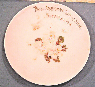"""1901 Pan-American Exposition Souvenir FLORAL DECORATED 10"""" PLATE, Buffalo, N.Y."""