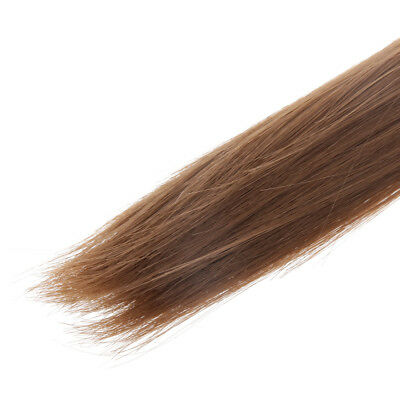 4pcs 25cm Doll DIY Straight Hair Wig Hairpiece for 1/3 1/4 1/6 BJD SD DZ DOD