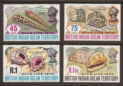 BRITISH INDIAN OCEAN TERRITORY 1974 Wildlife (2nd Series) Shells MNH (JB2487)