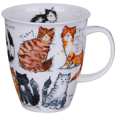 Dunoon Cat Mug NEW Fine Bone China Nevis Messy Cats in Gift Box Quality Art