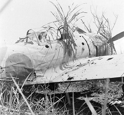 WW2 Photo WWII Abandonded A6M Zero Fighter New Guinea World War Two  / 6137