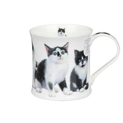 NEW Dunoon Fine Bone China Wessex Kittens Cat Mug Black & White Cute Top Quality