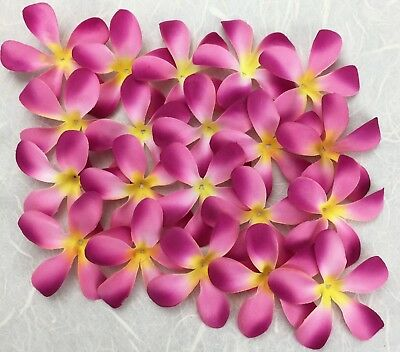 50 Fabric 6cm FRANGIPANIS Craft/Wedding/Hair Decorations/Table Scatter FUCHSIA