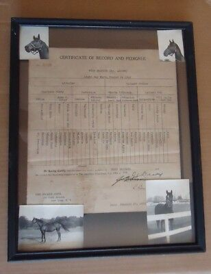 Vintage Horse Certificate of Record & Pedigree Miss Bayside Jockey Club NY