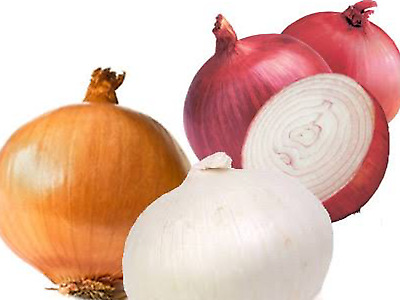 """Onion Seeds """"MIXED"""" (Approx 150 Seeds),Excellent Varietys"""
