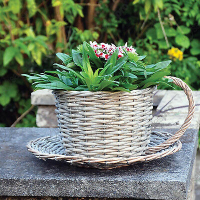 Novelty wicker Coffee Cup basket planter with multi buy deals