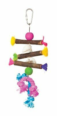 Prevue Hendryx 62505 Tropical Teasers Shells and Sticks Bird Toy