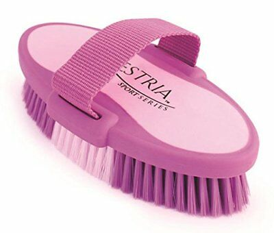 """Equestria Oval Body Brush Color: Purple Size: Large (2"""" H x 4"""" W x 7.5"""" D)"""