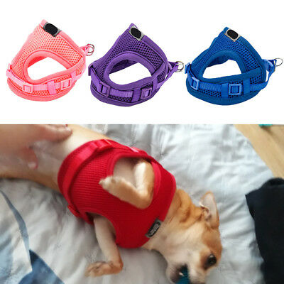Puppy Dog Harness Leash Lead Set Mesh Vest Small Tiny Pet Cat Teacup Chihuahua