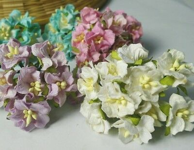 5 of Gardenia Flower Mulberry Paper Scrapbooki​ng card craft Wedding DIY 2.50cm