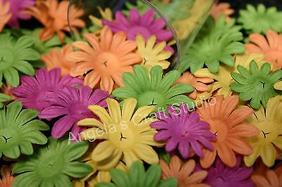"""30 PRIMA DAISY CRAZY """"MIA"""" Flowers 2 Sizes 4 Colours - Scrapbooking Cards Craft"""