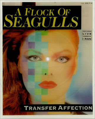 A Flock Of Seagulls – 2 x Picture Shape