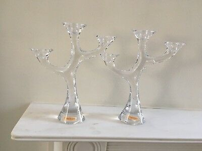 Nachtmann 'corallo' Crystal 3-Armed Abstract Tree Design Candle Holder 1 Pair
