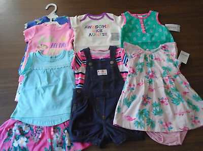 New 12 Pc. Lot Of Baby Girl Clothes 3-6 Months Nwt $126