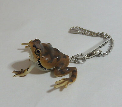 Capsule Toy Super Realistic Brown Tree Frog keyring Gashapon Japan