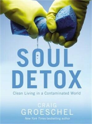 Soul Detox: Clean Living in a Contaminated World (Paperback or Softback)