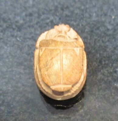 Ancient Egyptian Carved Scarab Bead 1473-1458 B.C