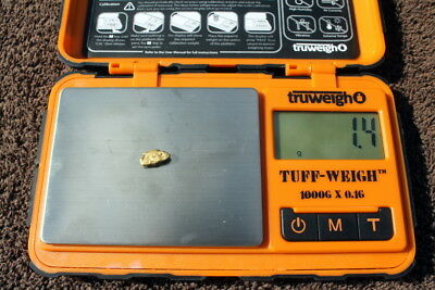 1.4 Gram Beautiful Natural Ca Gold Nugget From Feather River Plumas County