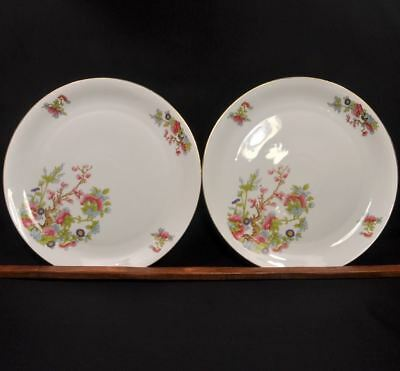 "Z.S. & Co. Zeh Scherzer Set of 2 Chargers Plates Bavaria 12"" Indian Tree w/Gold"