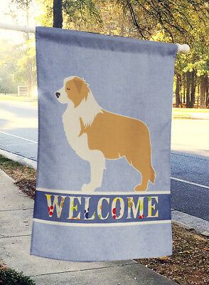Carolines Treasures  BB5526CHF Red Border Collie Welcome Flag Canvas House Size