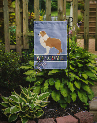 Carolines Treasures  BB5526GF Red Border Collie Welcome Flag Garden Size