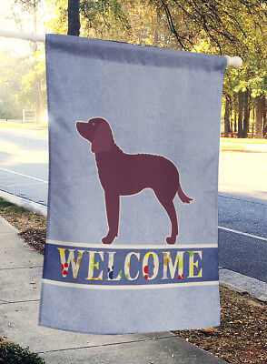 American Water Spaniel Welcome Flag Canvas House Size