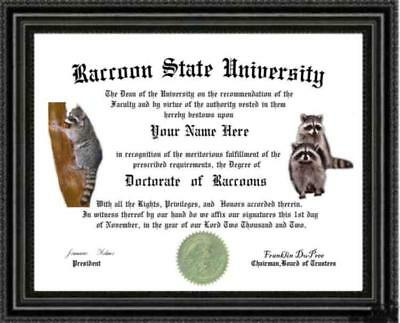 Raccoon Lover's Degree / Diploma Custom made and designed