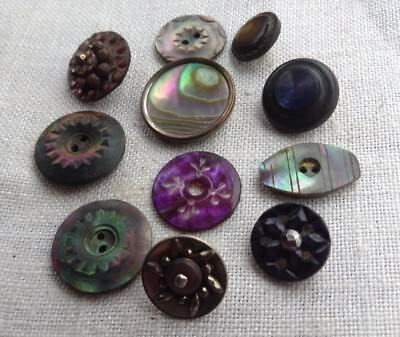Lot of 11 Antique Pearl Buttons-Abalone Shell-Tints-Cut Steels-Carved-Twinkle++