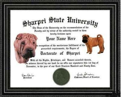 Sharpei Lover's Diploma / Degree Personalized Custom Made and Designed for you