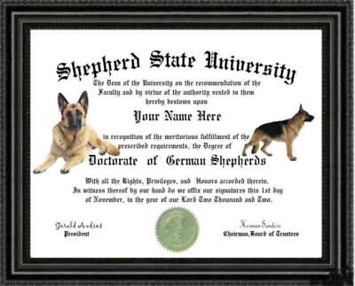 German Shepherd Dog Lover's Diploma / Degree Custom made and Designed Gag Gift