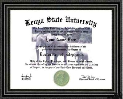 Elephant Lover's Doctorate Diploma / Degree Custom made and Personalized for you