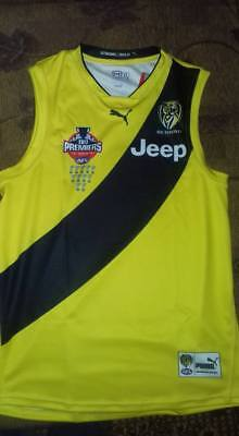 Richmond Tigers Jumper 2017