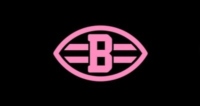 Cleveland Browns Hot Pink License Plate Breast Cancer Car Tag Football Nfl