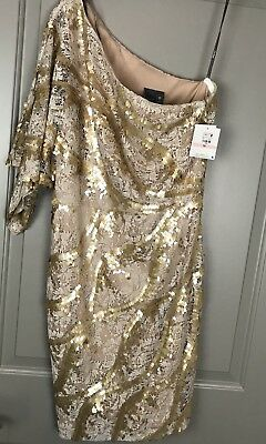 NWT Muse Women's Sequined Lace Ponte Dress Size 10 Gold MSRP $198